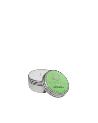 CHERIMOYA~Soy Travel Tin Candle