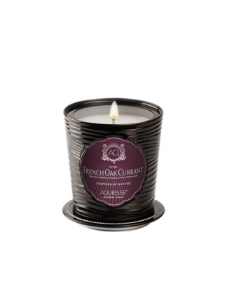 FRENCH OAK CURRANT~Luxe Tin Candle
