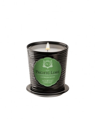 PACIFIC LIME~Luxe Tin Candle